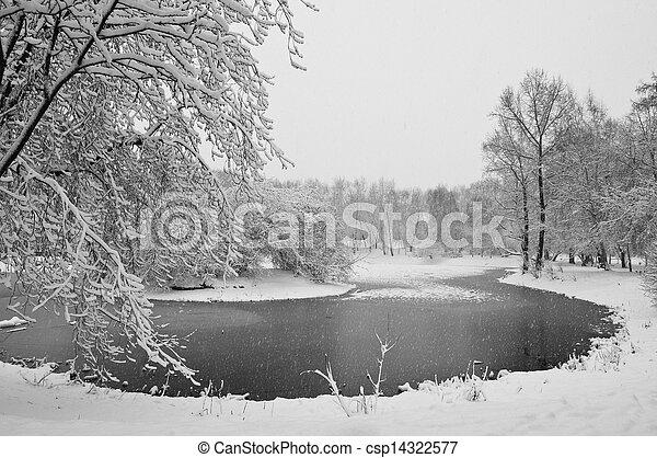 snowfall in the park - csp14322577