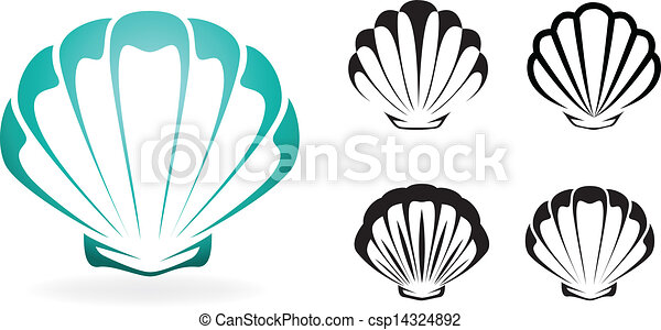 Shell collection - vector silhouette illustration - csp14324892