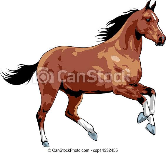Vecteur clipart de cheval gentil illustr gentil cheval isol sur csp14332455 - Clipart cheval ...