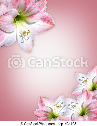 Amaryllis pink flowers Border - csp1434198