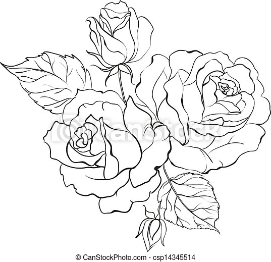 Rose Bouquet Drawing Bouquet of Roses