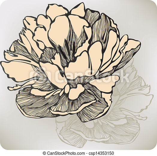 Decoration Flowers Drawings Decorative Hand-drawing