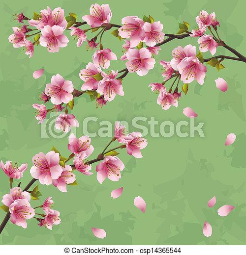 Vecteur EPS de vendange, arbre, japonaise, sakura, fond ...