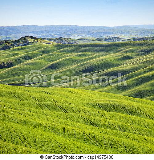 Tuscany, rolling hills on sunset. Crete Senesi rural landscape. Italy - csp14375400
