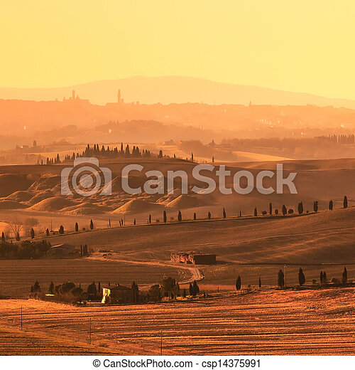 Siena, rolling hills on sunset. Rural landscape with cypress trees. Tuscany, Italy - csp14375991