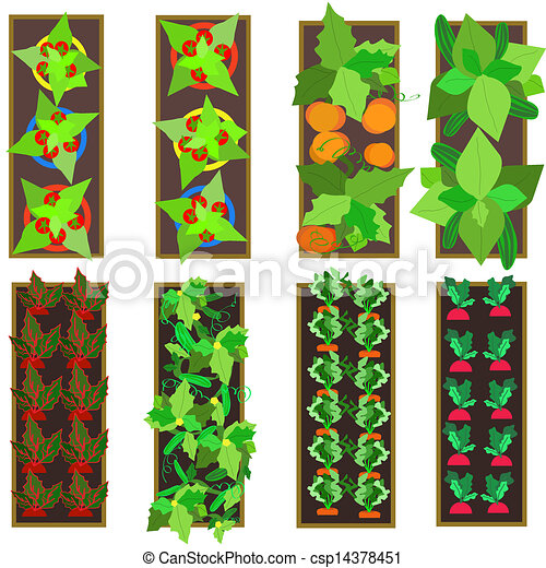 Clipart Vector Of Raised Gardens Illustration Of Raised