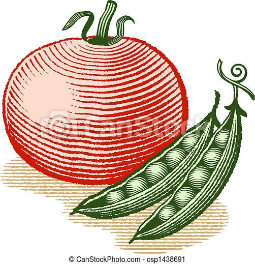 Tomato and Peas - csp1438691
