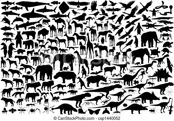 Animal outlines - csp1440052