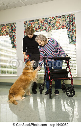 Elderly woman with therapy dog. - csp1440069