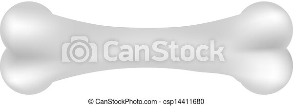 Vector illustration of bone - csp14411680