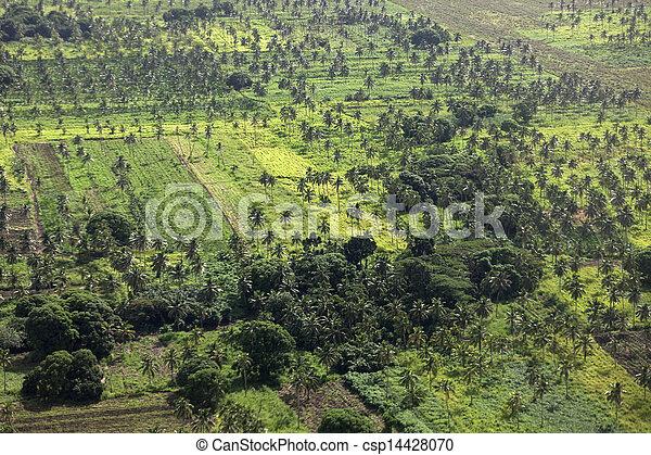 Rural Tonga - csp14428070