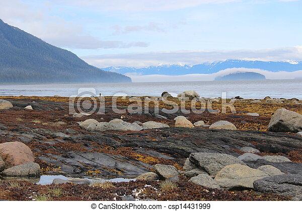Alaska Island Beach Landscape - csp14431999
