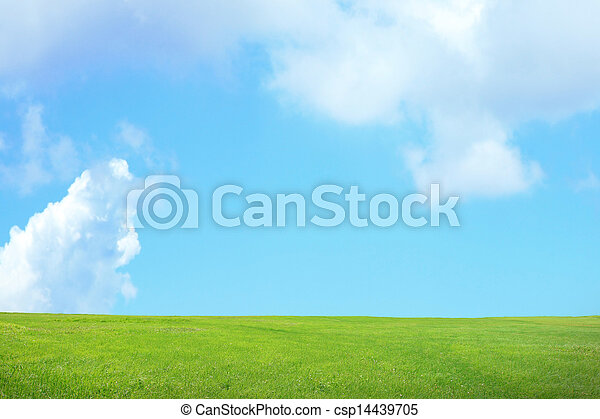 green grass with sky and cloud - csp14439705