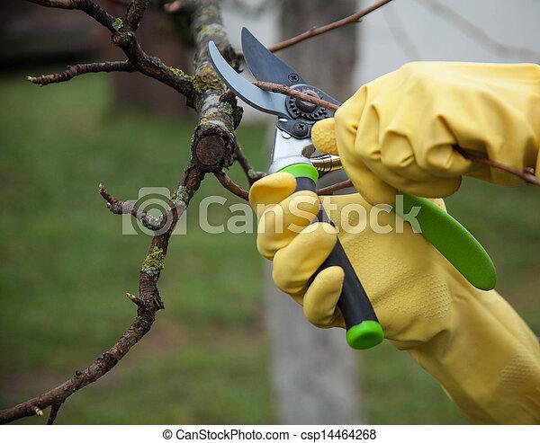 Stock de imagenes de trabajo guantes jardinero for Trabajo jardinero