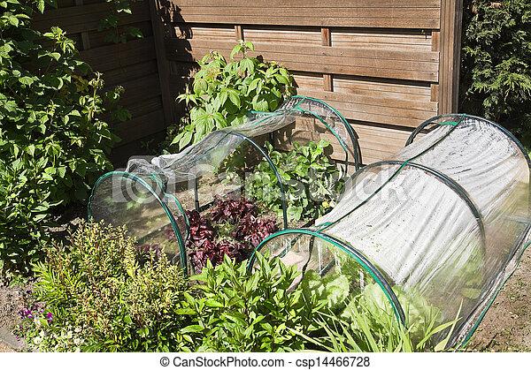 Kitchen garden for children with vegetables - csp14466728
