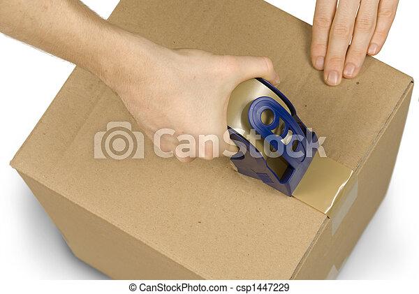 Preparing a packet - csp1447229