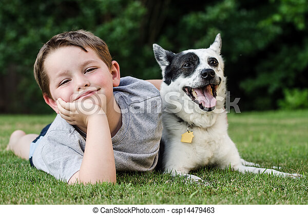 Child playing with his pet dog - csp14479463