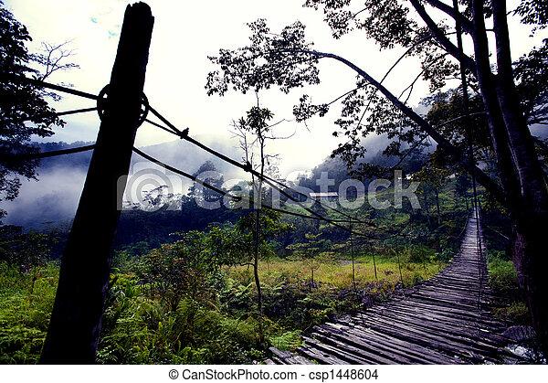 Hanging Bridge Fear - csp1448604