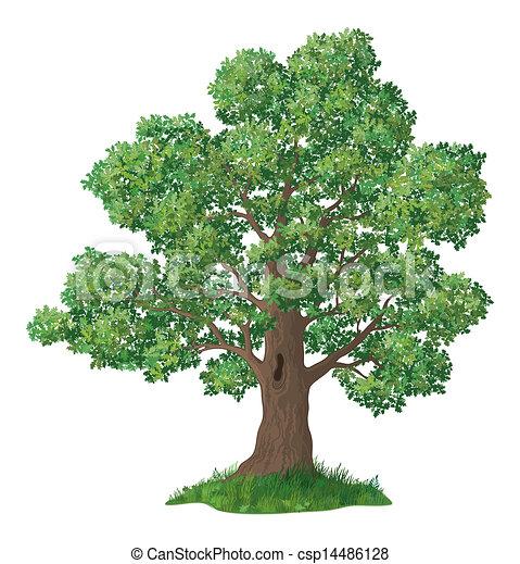 Oak tree and green grass clip Oak Tree Clip Art