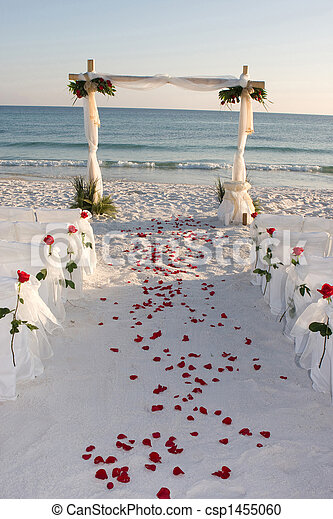 Beach Wedding Path Rose Petals - csp1455060