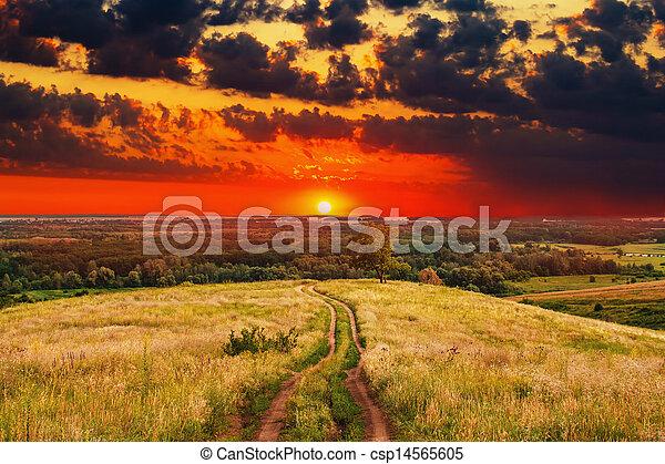 road landscape sunset summer nature field sky rural green sunrise tree grass path - csp14565605