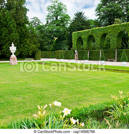 Alley lawn and hedge in a summer park - csp14566766