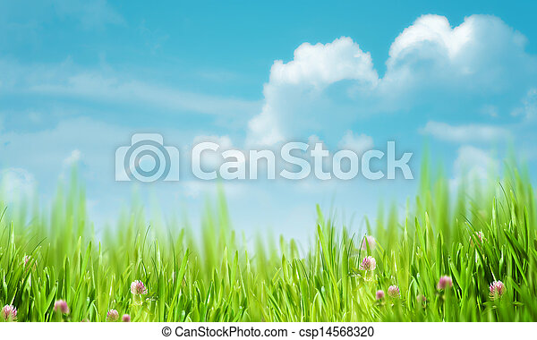 Natural rural backgrounds with copy space - csp14568320