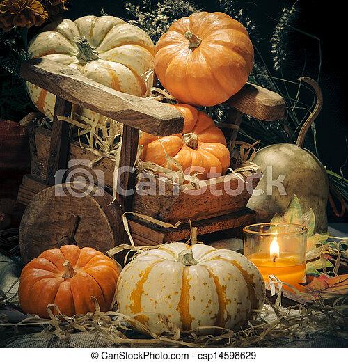 Pumpkins still life - csp14598629