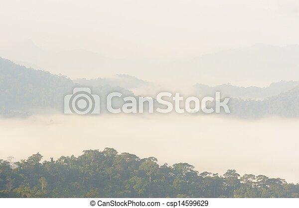 Beautiful floating fog in rain forest, Thailand.