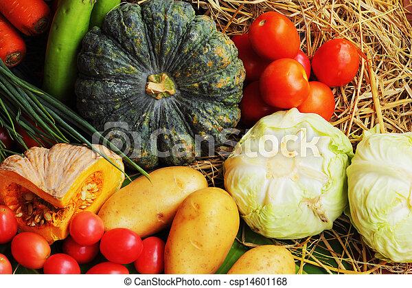蔬菜, 新鮮 - csp14601168