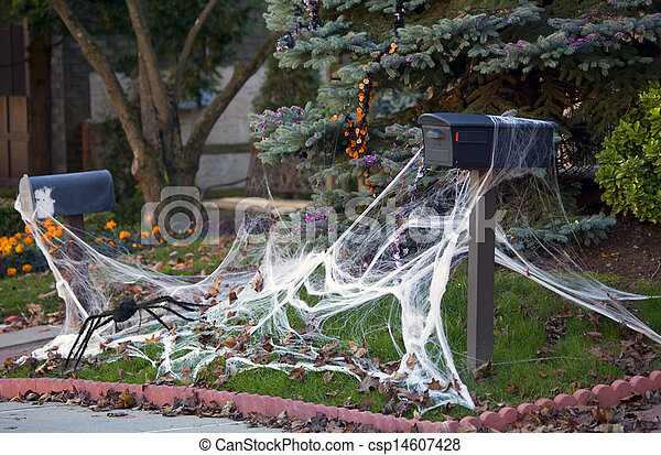 spider and its cobweb csp14607428