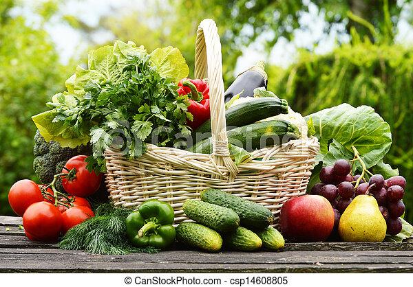 Fresh organic vegetables in wicker basket in the garden - csp14608805