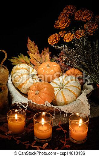 Pumpkins still life - csp14610136