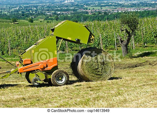 Agriculture - csp14613949