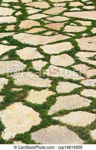 Stock de fotos jard n piedra trayectoria pasto o c sped for Patios con cesped y piedras