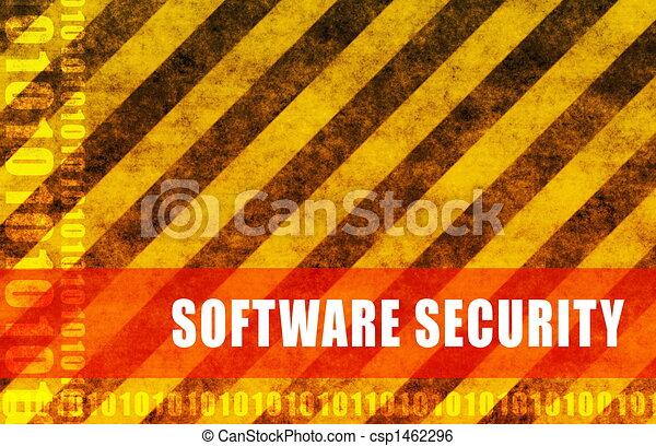 Software Security - csp1462296