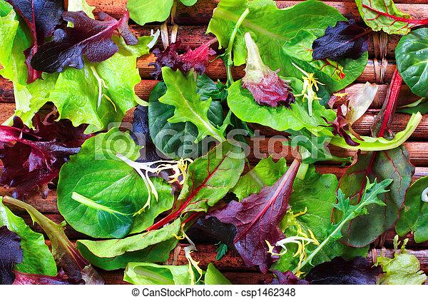 Organic Spring Mix Lettuce - csp1462348