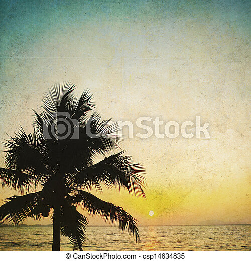 Coconut palm tree silhouetted and sunrise  in vintage background - csp14634835