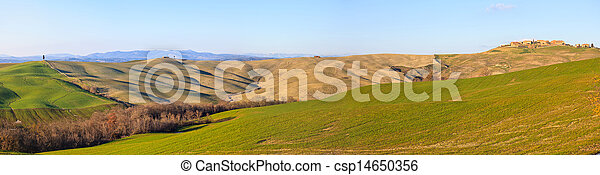 Italian panorama. Cypress tree, rolling hills and green field, rural landscape in Crete Senesi, Siena, Tuscany. Italy - csp14650356