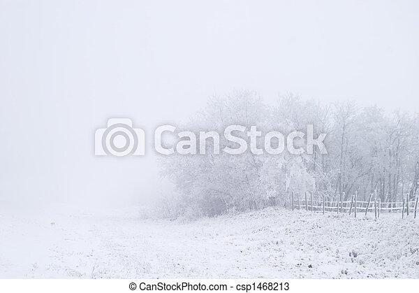 Prairie Fog - csp1468213