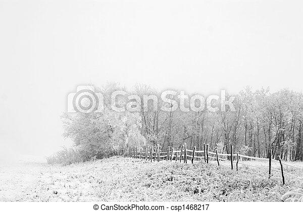 Prairie Fog - csp1468217