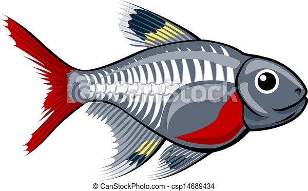 X-ray tetra cartoon fish - csp14689434