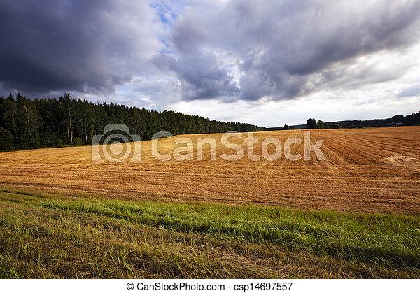agriculture   - csp14697557