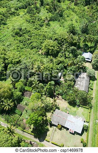Aerial of Tropical Urban Area - csp1469978