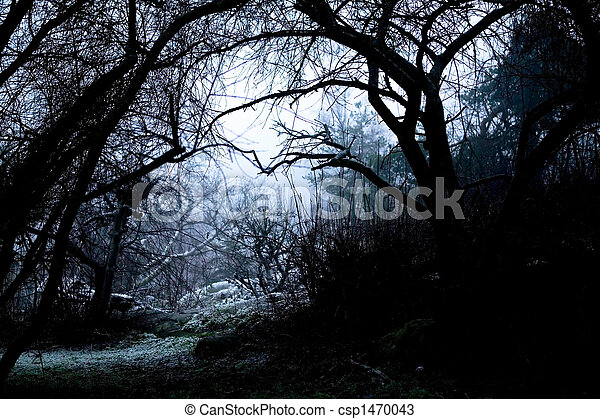 Spooky Path in Fog - csp1470043