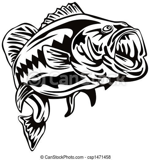 Largemouth bass - Illustration of a bass csp1471458 - Search EPS Clip ...
