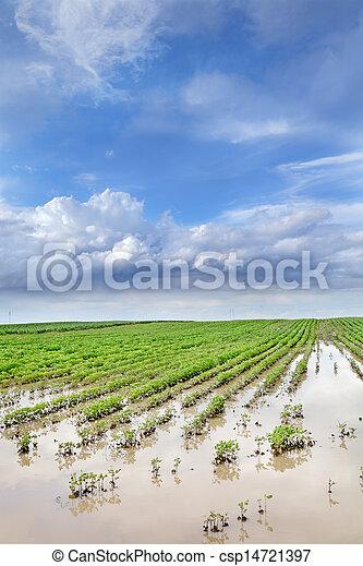 Agriculture - csp14721397