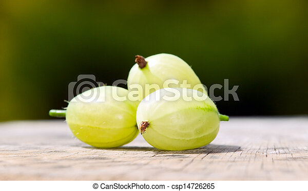 Gooseberries with green nature background - csp14726265