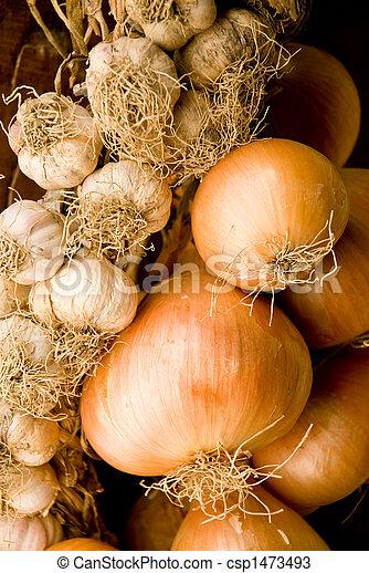 onion and garlic - csp1473493