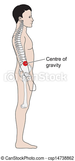Clip Art Vector of Human centre of gravity - Adult male centre of ...